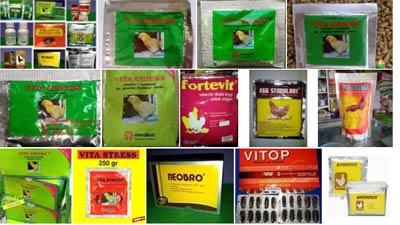Vitamin untuk ayam brahma